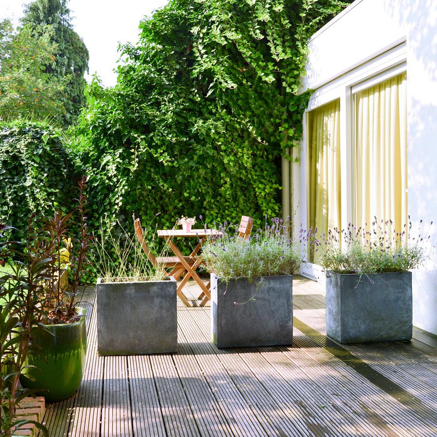 Eigen tuin bij een hotelkamer Utrecht